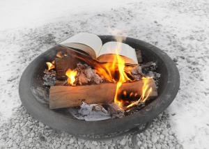 Image of a firepit with log, flames and about-to-burn book